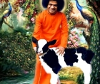 AREN'T YOU COMING BACK SAI KRISHNA?
